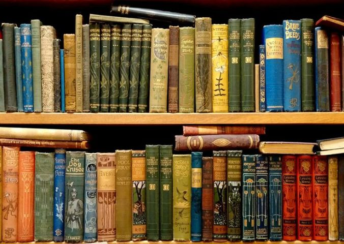 7271098b3357c690f7ca288afb6436dd--victorian-books-victorian-era